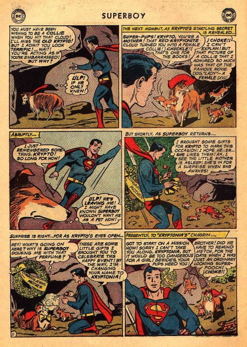 Biological Manipulation (self)–Krypto becomes female collie - Superboy V1 #101-25