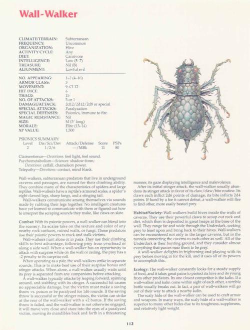 043) Arachnid Anatomy