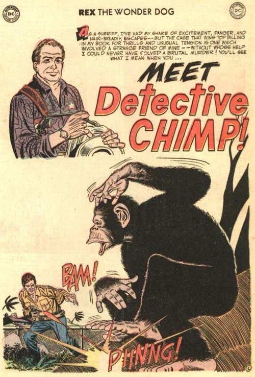 primate-mimicry-dc-ch-detective-chimp-the-adventures-of-rex-the-wonder-dog-4