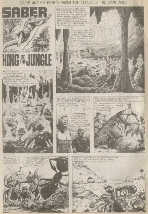 ant-mimicry-saber-king-of-the-jungle-tiger-763-1969