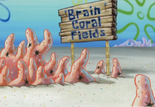 Intelligence Enhancement-Brain Coral Fields-SpongeBob
