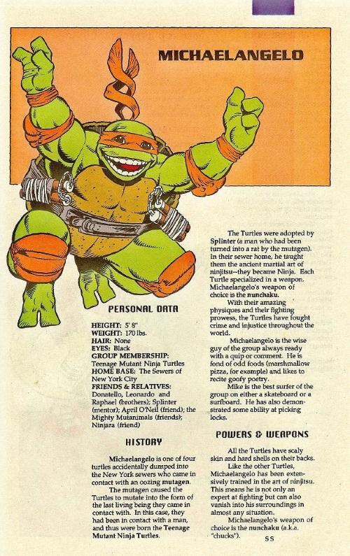 Turtle Mimicry-TMNT-Michaelangelo-TMNT Mutant Universe Sourcebook #1
